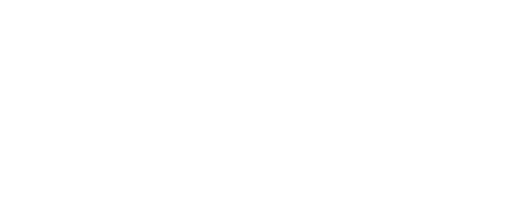 DMC IT Solutions